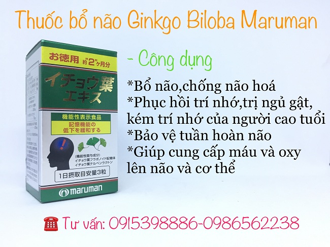 công dụng của thuốc bổ não ginkgo biloba maru man