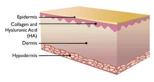 Hyaluronic acid – bí quyết chống lão hóa của phụ nữ